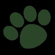 Columbus Outdoor's Company logo